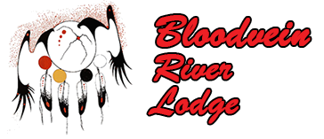 Bloodvein River Lodge